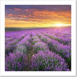Meadow Of Lavender. Art Print Home Decor Wall Art Poster - C