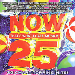 Now That#x27;s What I Call Music : Vol. 25 Now That#x27;s What I Call Music Rock 1 Disc