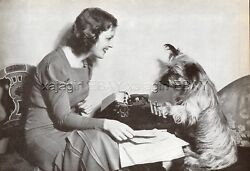 DOG Skye Terrier Pretending to Type on Typewriter Vintage Print 1930s