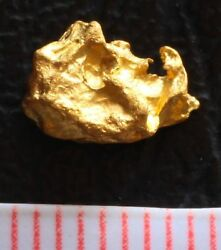 And039rhinoand039 Shaped Australian Gold Nugget - 0.83 Gram Specimen Cool Collector Shape