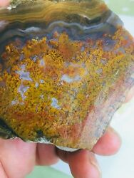Agate Lapidary Rough. Plume Moss Agate-100 Natural.