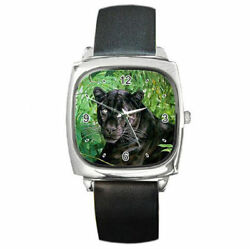 Wild animals in the forest jungle black panther watch