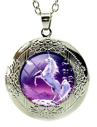 Unicorn Horse Locket Pendant Necklace 24quot; Stainless Steel Chain Fast Shipping $12.95