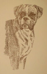 BOXER DOG ART Signed Print #34 Stephen Kline adds your dogs name free MAGIC GIFT