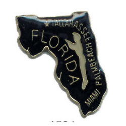 Wholesale Lot Of 12 Florida State Shaped Lapel Hat Pins Tie Tac Fast Shipping