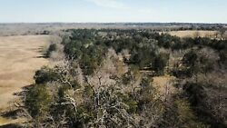 38 Acres of Land in Fayette County Texas wMineral Rights (near La Grange TX.)