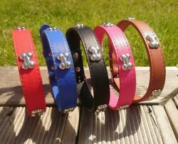Dog Collar Studded Bone Puppy PU Leather XS Small Medium Large Pink Red Terrier