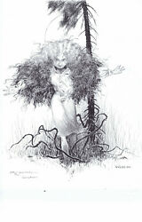 Images of A Distant Soil 1 HUNTER LIANA SCOTT Pinup Charles Vess 1992