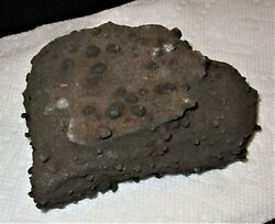 This Stone Will be on the Cover of Magazine's-Rolling-USA-Celebrity Meteorite