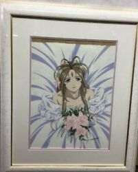 Oh My Goddess Wedding Anime Production Cel picture Limited 250 From JP m58