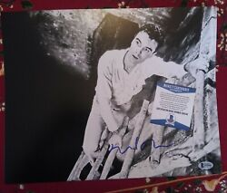 David Byrne Talking Heads Music Rare Signed Autographed 11x14 Photo Beckett
