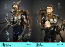 Black 13 Park Black Laborary 1/6 Frog Army Ranger Water Forces Figure Instock