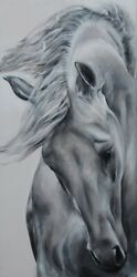 And039untamed Beautyand039 Professional Canvas Horse Print By Jessica Hill