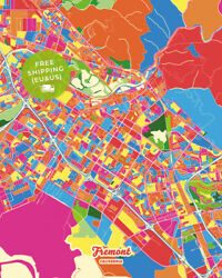 Fremont Colorful Street Map Poster Creative Home Decor Borderless Map Print...