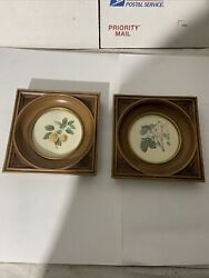 2 Vintage Kitchen Wall Decor 6andrdquox6andrdquo Pictures Frames Fruit Plants