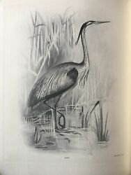 Charles Stonham / The Birds Of The British Isles First Edition 1911