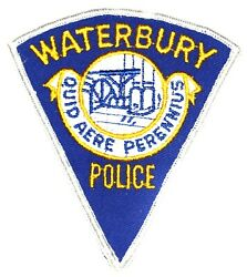 Waterbury Connecticut Ct Sheriff Police Patch Pie Shape Vintage Old Mesh