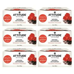 Attitude Natural Air Purifier 8oz 6 Packs - Activated Carbon 全天然除甲醛除臭味