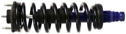 181341 Monroe Shocks And Struts Suspension Strut And Coil Spring Assembly