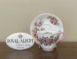 Royal Albert Blossom Time Series Apple Blossom Flat Cup And Saucer Set
