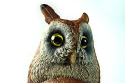 10 Vienna Bronze Owl Bergmann Coldpainted Signed Namgreb