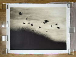 Murmure Street - Soaring - 8 Color Lithograph - Hand Drawn Edition Of 5