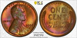 1956 D Lincoln Wheat Penny Pcgs Ms64rb True View + Psgs 35 Anniversary Holder
