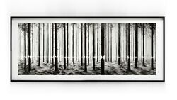 Pejac - Linea 2016 Framed - Sold Out Edition Of 200 - Lenticular Print