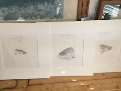 Russell Chatham Original Artwork Signatured Rainbow Brown Trout King Salmon