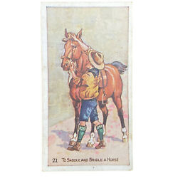 Scout Gum Advertising Trading Cards Early 1900s Antique Boy Scouts Saddle Horse