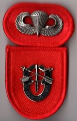 7th Special Forces Group - Beret Flash Di / Crest Oval Wings Airborne Para
