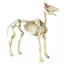 Halloween Prop Life Size 74 Inches 6 Ft Horse Skeleton Lighted Eyes And Sound