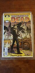 Lot Comics The Walking Dead First Print Big Collection
