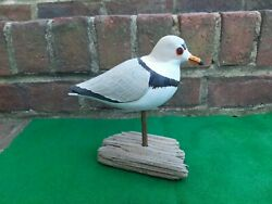 Carved Wooden Piping Plover Shorebird Duck Decoy Signed Rhodes 2010 Absecon Nj