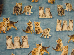 CATS KITTY CAT BLUE COTTON FABRIC FQ