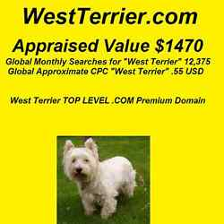 WestTerrier.com - Premium Domain Name - West Terrier 12375 Monthly Searches