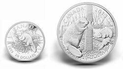 Canada 20 And 50 Fine Silver Coins - The Beaver 2013
