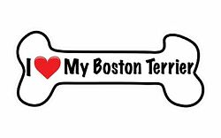 I Love My Boston Terrier Dog Bone Heart Bumper Sticker Car Decal