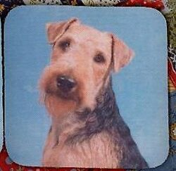 WELSH TERRIER Rubber Backed Coasters #1040