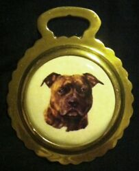 NEW DOG BRINDLE STAFFORDSHIRE BULL TERRIER Ceramic Horse Brass  WOW YOUR WALLS!