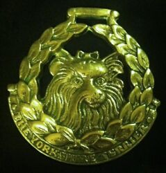 Oversized THE YORKSHIRE TERRIER JEE Horse Brass DOG LOVER Ellis! WOW YOUR WALLS!