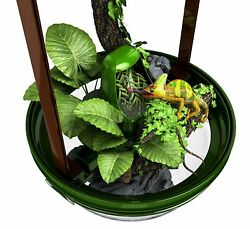 Reptile Water Dispenser Chameleon Crested Gecko Supplies Habitat Terrarium Kit