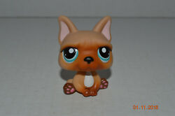 Littlest Pet Shop~#1847~French Bulldog~Puppy Dog~Beige Caramel~Blue Dot Eyes