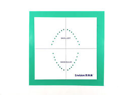 Envision Latex Dental Dam Mint Natural Rubber 6x6 Green 36 Sheets And Frame