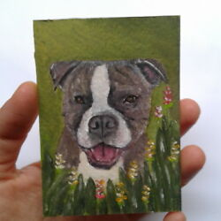 Staffy Pit bull dog flower ACEO oil painting animal Staffordshire Bull terrier H