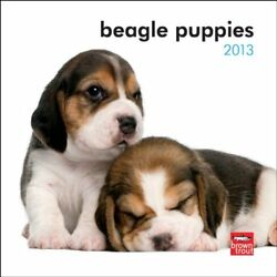 BEAGLE PUPPIES 2013 7X7 MINI WALL By Browntrout Publishers **BRAND NEW**
