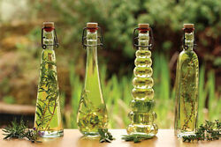 Ambrosial Jive Aroma Oil for diffusers humidifiers 10 to 1000ml