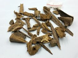 High Quality OLD WILD FOREST Agarwood worldwide for lern 226,26 grams