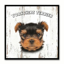 Yorkshire Terrier Dog Canvas Print with Picture Frame Gift Home Decor Wall Art D