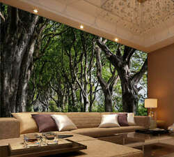 Mysterious Forest 3d Full Wall Mural Photo Wallpaper Printing Home Kids Decor